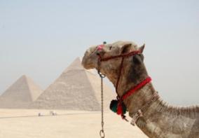 Egypten Ingvar 050